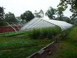 Yale Sustainable Food Project, Farm