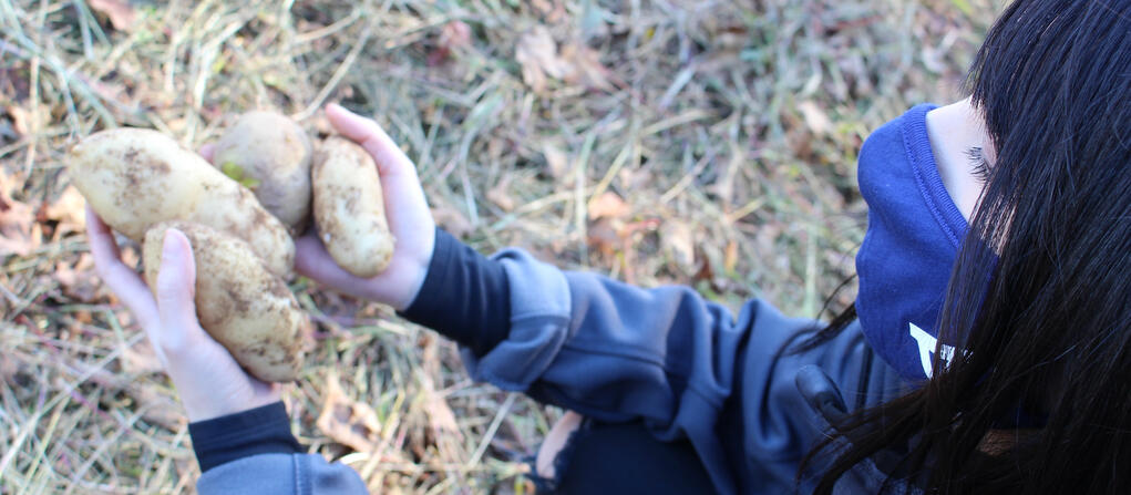 girl holding potatoes