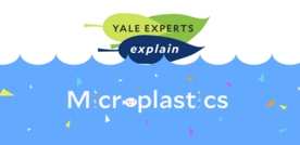 yale experts explain microplastics with the o spelled out with palstic