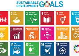 sustainable development goals squares with each goal in a square