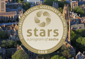 aashe stars gold seal